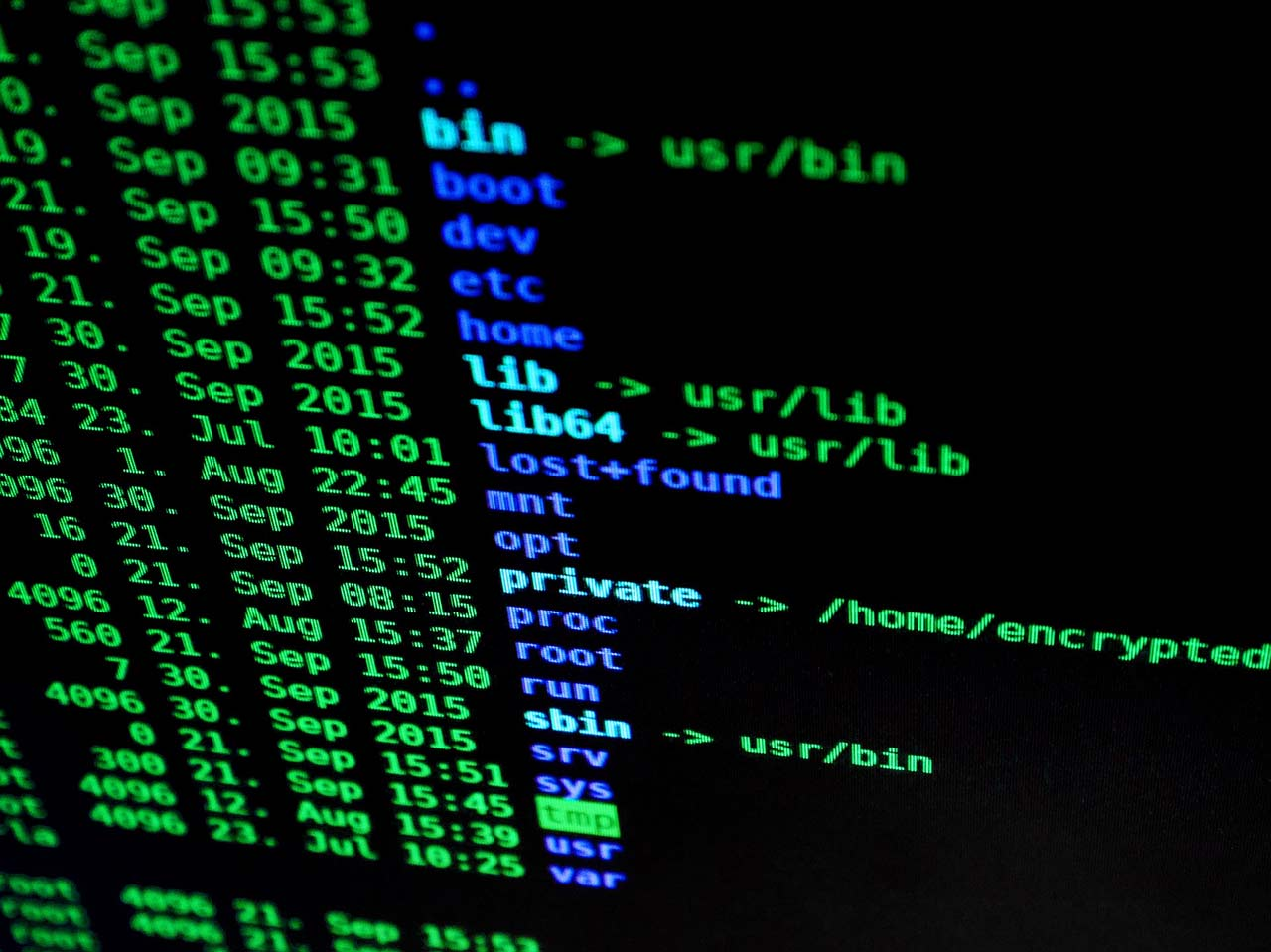 cyber-security-services-mallowstreet